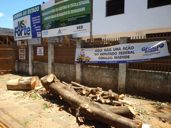 Árvores cortadas em frente a Escola Estadual Presidente Vargas